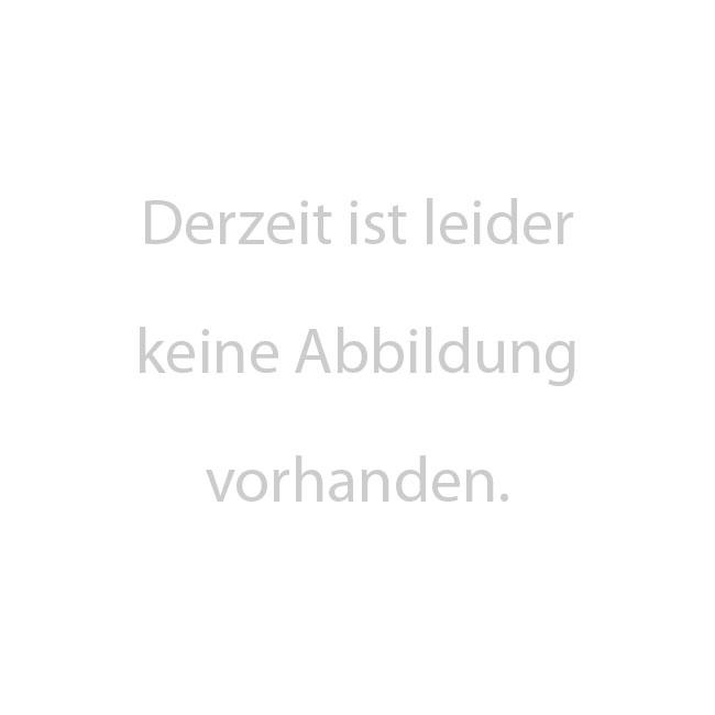 Doppelstab-Schmuckzaun Rondell